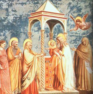 Anne lors de la présentation de Jésus au temple, Giotto.